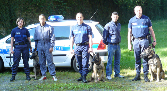 Formation  continue conducteur de chien police municipale
